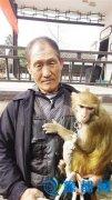 新野6只猴参演《大闹天竺》 王宝强夸演得好