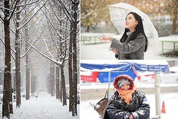 郑州入冬初雪 无声无息温暖而皎洁