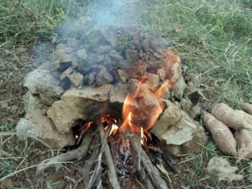 冬天的农村,很常见的一种现象就是在门口烤火,一堆人聚在一起,取暖聊天。顺带着搁火里烤点吃的~比如:红薯!
