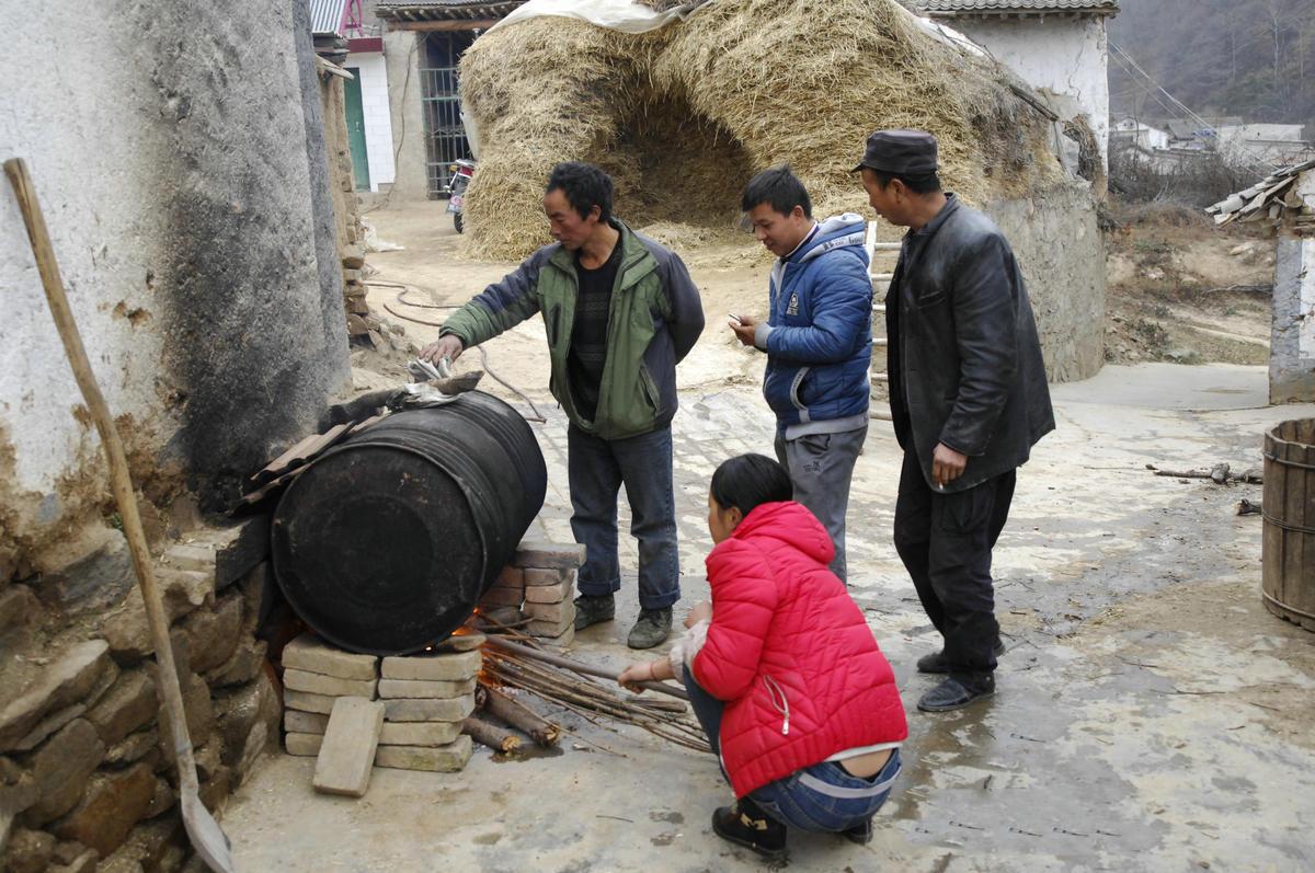 转眼又是一年,农村里的冬季过年筹备是比较繁杂的,农民们可能早早就开始了。今年猪价比较高,农户养的黑土猪一度涨到15块钱一斤,一些农民迫不及待开始杀猪卖肉了。退猪毛离不开开水,豫西农村喜欢用村的大铁锅,这里农民却是用了一个大的废汽油桶。