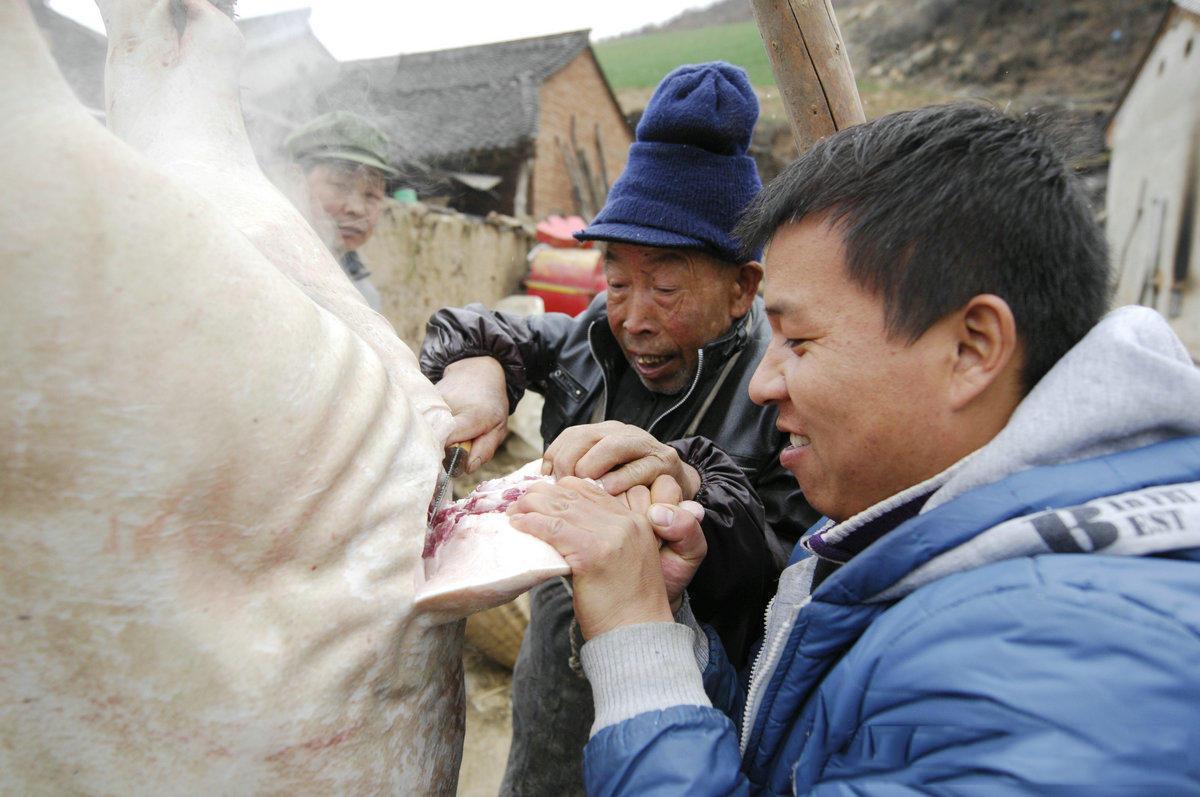 猪身上有一个地方农村小孩子是不能吃的,老人们说吃了会经常流哈喇子。然而大人们都知道,猪尾巴是很不错的凉菜。