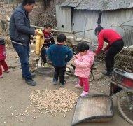 河南农村冬日里的一道美味 充满土地的气息