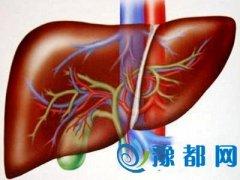 肝患上疾病的几率有多大 跟生活作息有直接关系