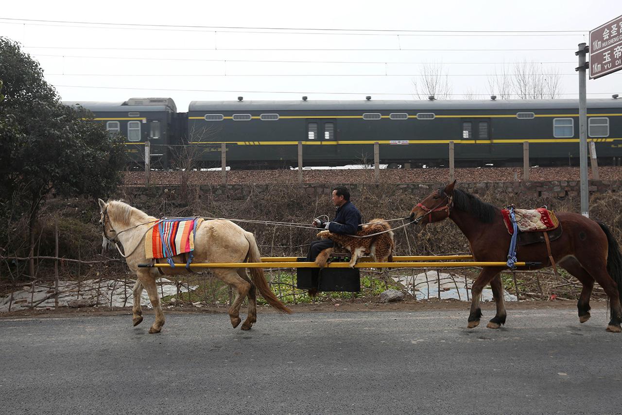 今年57岁的郭老汉坐在轿子上,抬轿的是两匹马,轿子晃晃悠悠的走着,旁边的火车飞驰而过,马也一点也不惊慌。