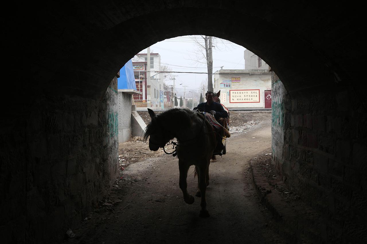 """郭老汉说:""""养马和养孩子一样,马通人性,你对它好,它就听你的话。"""""""