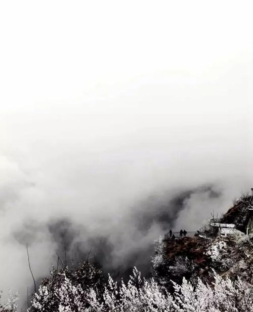 雪花绽放,晶莹剔透,轻柔的雪抚摸着山林,换上一身白裘。