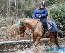 肥胖女孩将马饿成骷髅 被罚10年内禁止养马!
