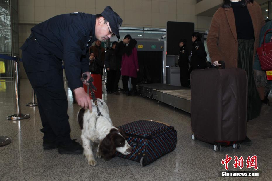 """1月10日,郑州铁路公安处在郑州东站举办""""警民开放日""""活动。特警们向旅客展示了配备的枪支、催泪喷射器、伸缩警棍等警用装备,并展示了擒敌对抗、蒙眼拆装枪支等多种警务技能。中新社记者 王中举 摄"""