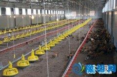 卢氏县公安局组织12月集中扶贫活动 见证范里镇何窑村产业扶贫项目投产