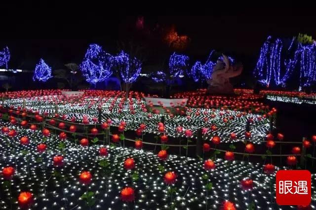这几天,2017大宋上元灯会主会场龙亭景区火了。