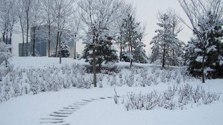 """全国多地迎大范围雨雪天气 气温""""跳崖式""""下跌"""