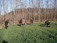 南阳市植保站专家组莅临西峡县督导麦田监测防控工作