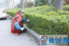 驿城区机关事务局组织志愿者开展多种形式的义务劳动