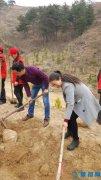 西峡县电化教育中心积极参加义务植树活动