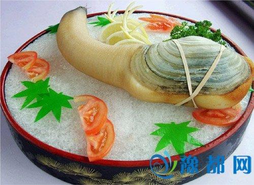 象拔蚌营养价值如何 为何中国人爱吃象拔蚌