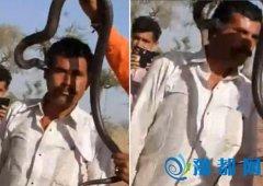 印度男子和眼镜蛇互动 遭'蛇吻'中毒身亡