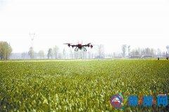 遂平:统防统治确保小麦丰产丰收