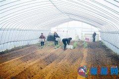 产业化扶贫到农户