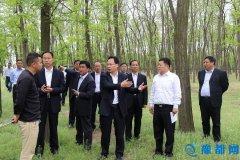 我县积极筹备中国・民权首届槐花旅游文化节