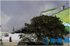 大风致奥运赛艇比赛被临时取消 看台上垃圾乱飞