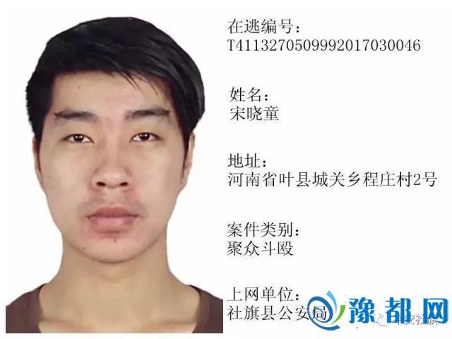 社旗县警方发布通缉令 看到他们立即报警!