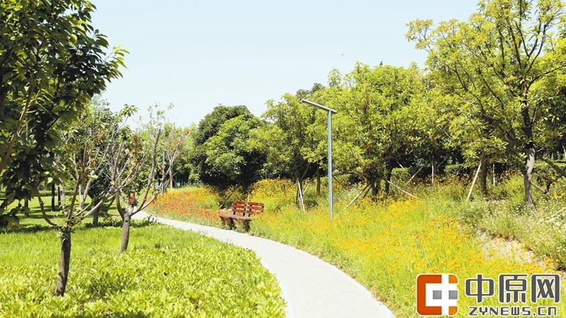 5月的龙子湖畔,日朗风清,草木葳蕤,又一波当季鲜花如约盛开,俏皮的滨菊、秀气的常夏石竹和热情的丰花月季又在招手迎客。