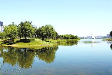 郑州龙子湖畔 鲜花盛开招手迎客