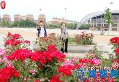 内黄县切实加强城市基础设施建设