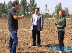 市林业和园林局局长宋孟欣调研市直义务植树基地管理情况