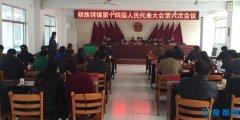 胡族铺镇召开第十四届人民代表大会第六次会议