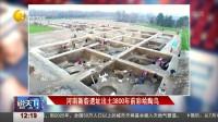 河南新砦遗址出土3800年前彩绘陶鸟
