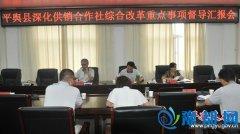 平舆县深化供销社综合改革重点事项督导汇报会召开