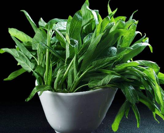 空心菜叶子能吃吗?