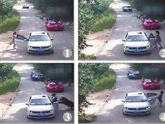 北京动物园老虎咬伤人事件 死者家属否认是医闹