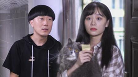 陈翔六点半 2017:单身狗巧用猫咪换取美女芳心