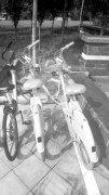 郑州街头现新型共享单车 可边骑车边充电