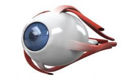 远视眼的两大常见症状