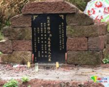 """四川岳池通报""""截访拘禁致老人死亡"""":抓获9人"""
