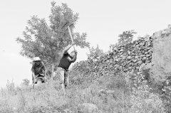 永城爷孙三代人60多年接力垦山 植绿700余亩