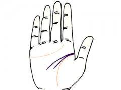 高智商人的手相特征有哪些