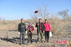 父子坚守腾格里沙漠三十余载:造林约680个足球场