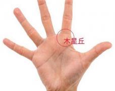 手相分析应该关注手掌中哪些区域