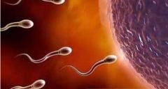 男人输精管堵塞会有什么影响?