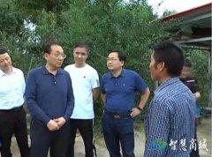 县委书记李高岭到鄢岗镇检查指导特色产业发展