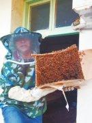 河南籍务工人员组建义工灭蜂队 4年端掉5000多个马蜂窝
