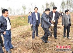 市委副书记、市长陈星莅临平舆县调研指导生产自救工作