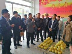 省农业厅副厅长刘保仓到宁陵县进行调研考察