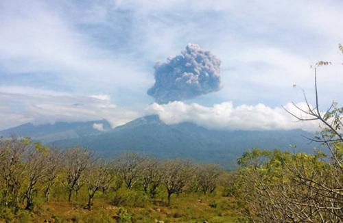 """据报道,此次爆发的是林贾尼火山口内部一座较小的火山锥""""巴鲁贾尼火山"""",当局昨日提高火山警戒级别,但距离最高危险级别仍有2级。现场方圆约3.7公里的乡镇暂未受影响,龙目岛机场运作如常,但部分往来旅游胜地�Q里岛的航班取消。"""