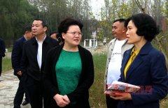 县长张颖波调研教育园区、城区游园和数字化城管建设工作