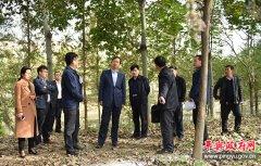 平舆县县长赵峰就推进小草河截污工程和小清河综合治理工程进行现场办公